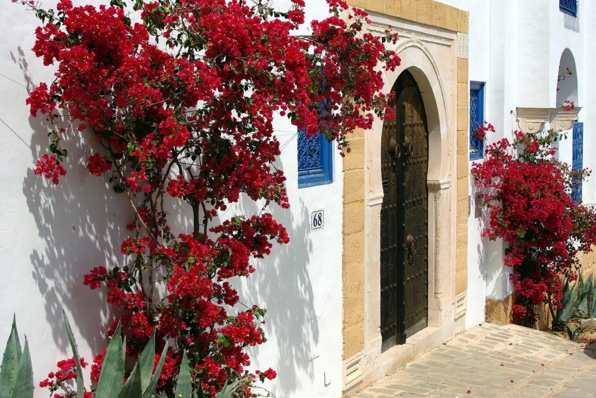 Túnez Exclusivo al Completo 1