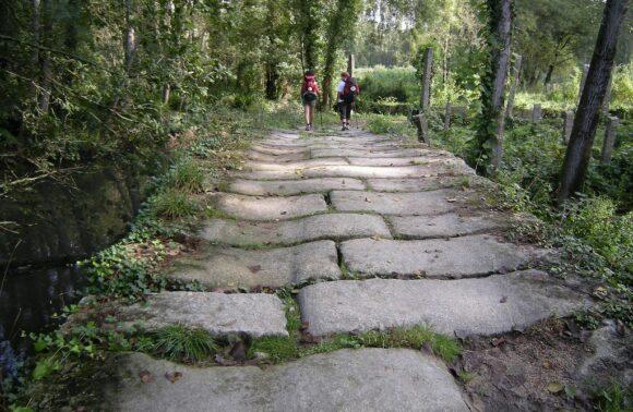 Camino Portugués desde Tui a Santiago en 6 etapas