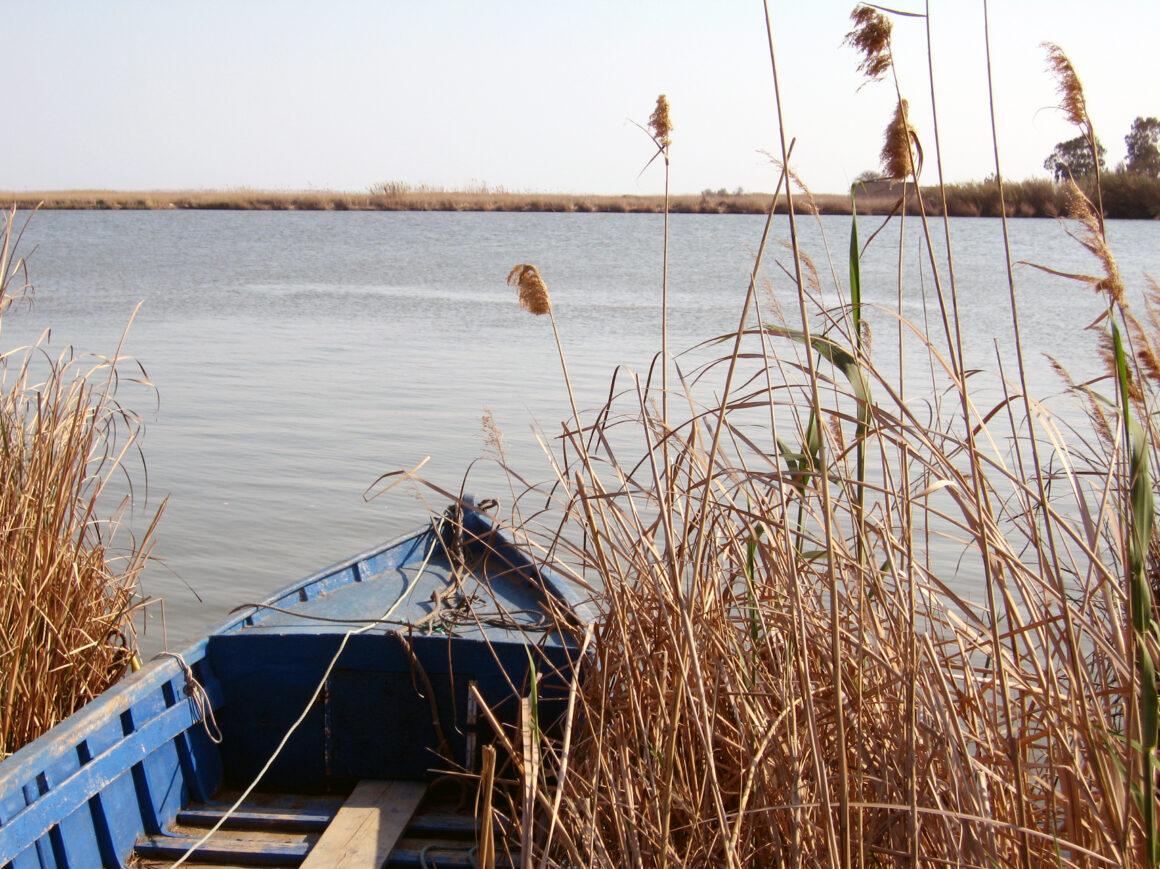 fin de curso al delta del ebro