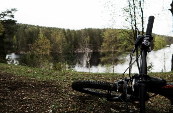 MTB Navarra: Cicloturismo por la Selva de Irati