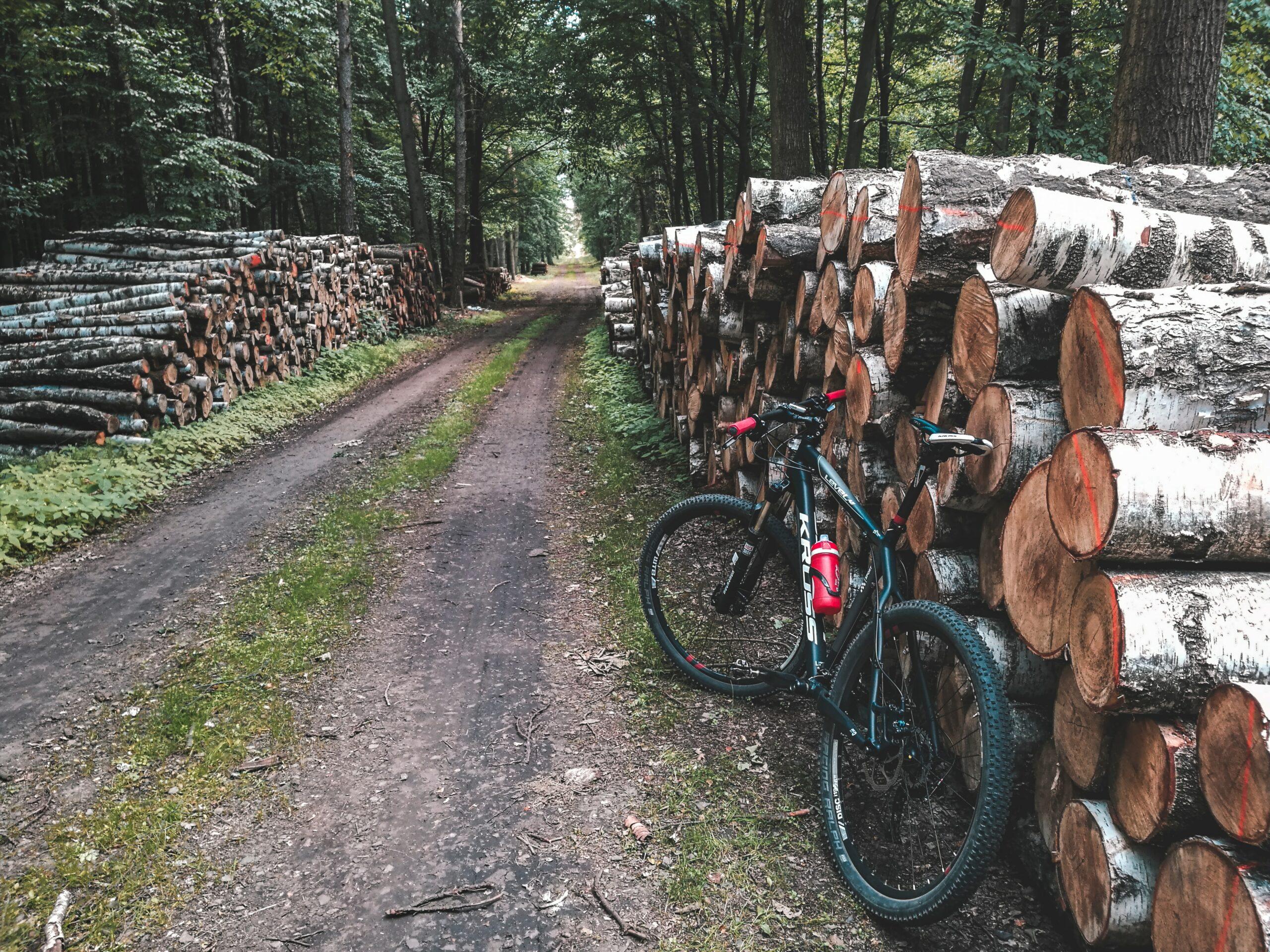 MTB Navarra - Viajes en bicicleta organizados