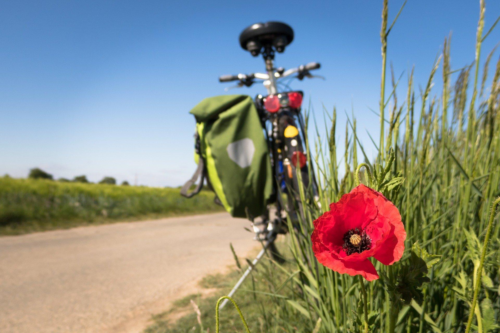 Viajar de forma sostenible